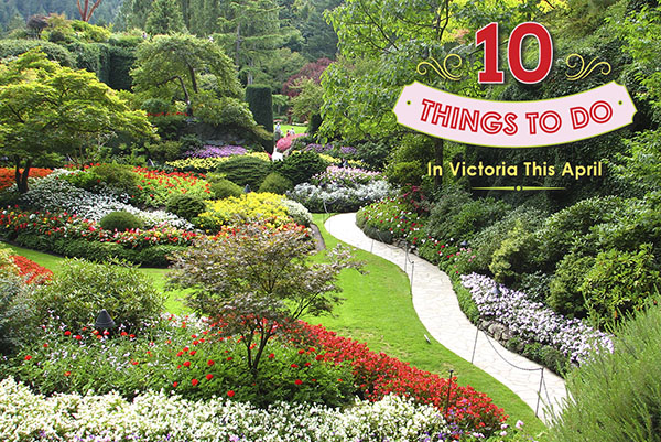 Make the most of april in victoria b c tourism victoria - Best time to visit butchart gardens ...