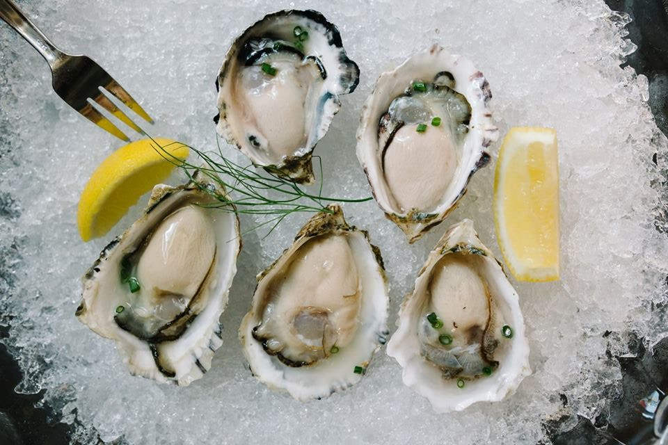 10 acres commons oysters