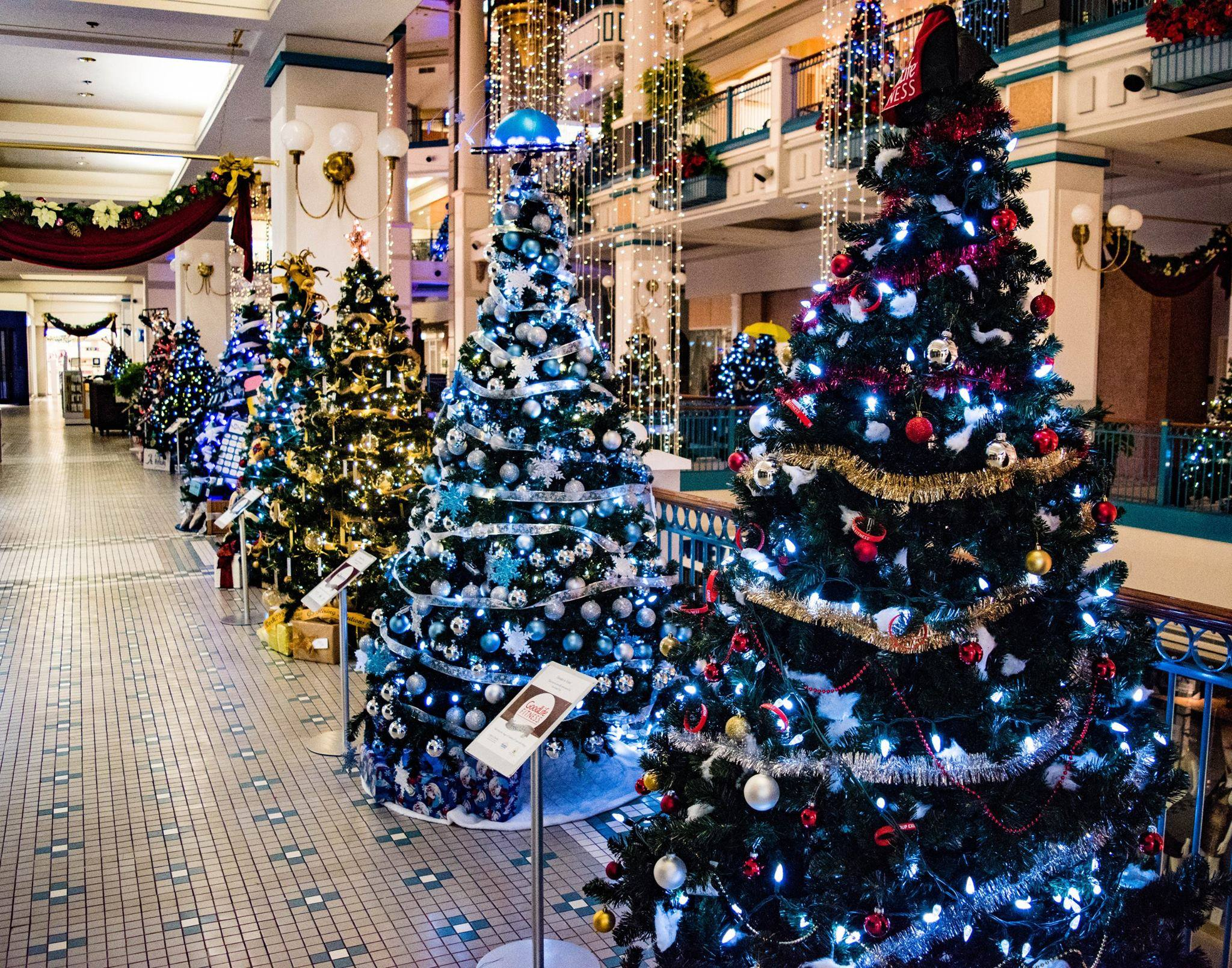 Image result for 5 tips to enjoy spectacular Christmas with your family