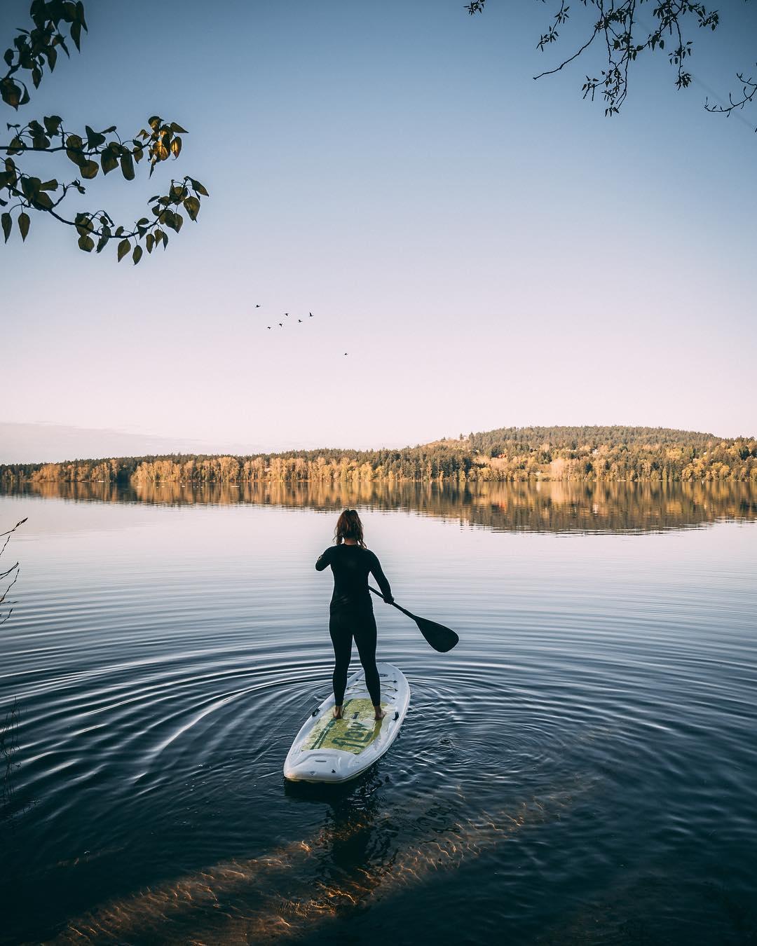 Elk/Beaver Lake Regional Park Paddle Board Victoria