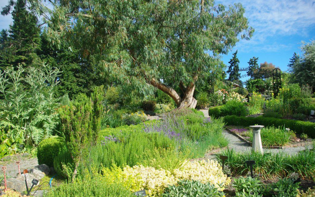 Gardens at HCP