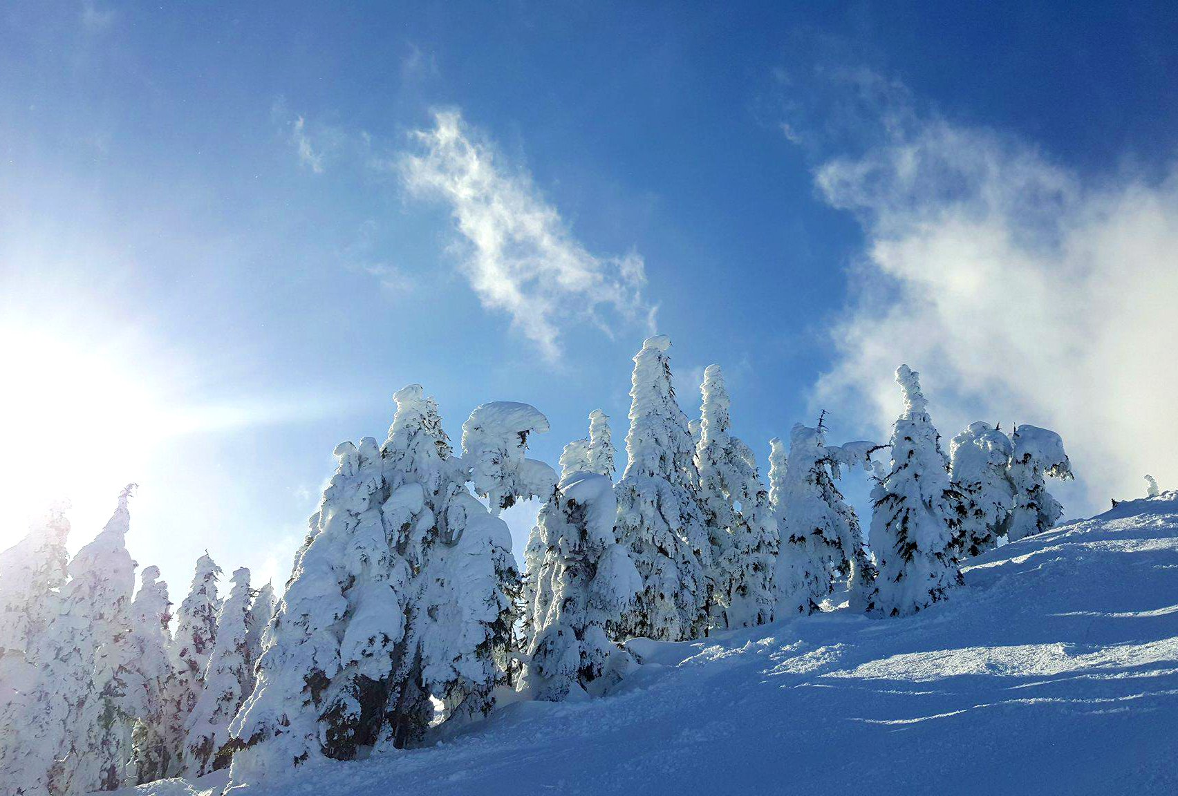 mount washington alpine resort victoria bc skiing vancouver island