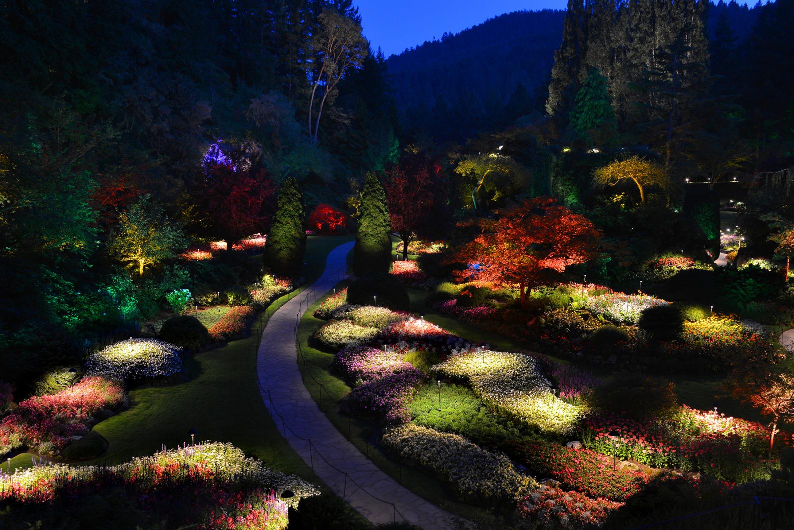 Night Illumination at The Butchart Gardens