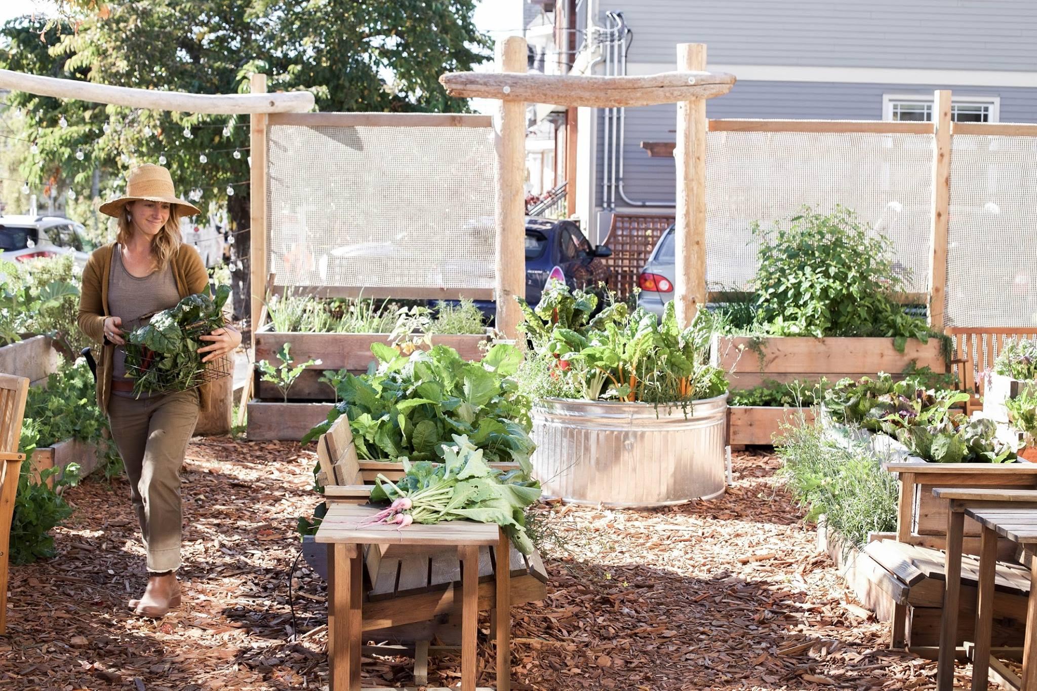 nourish garden