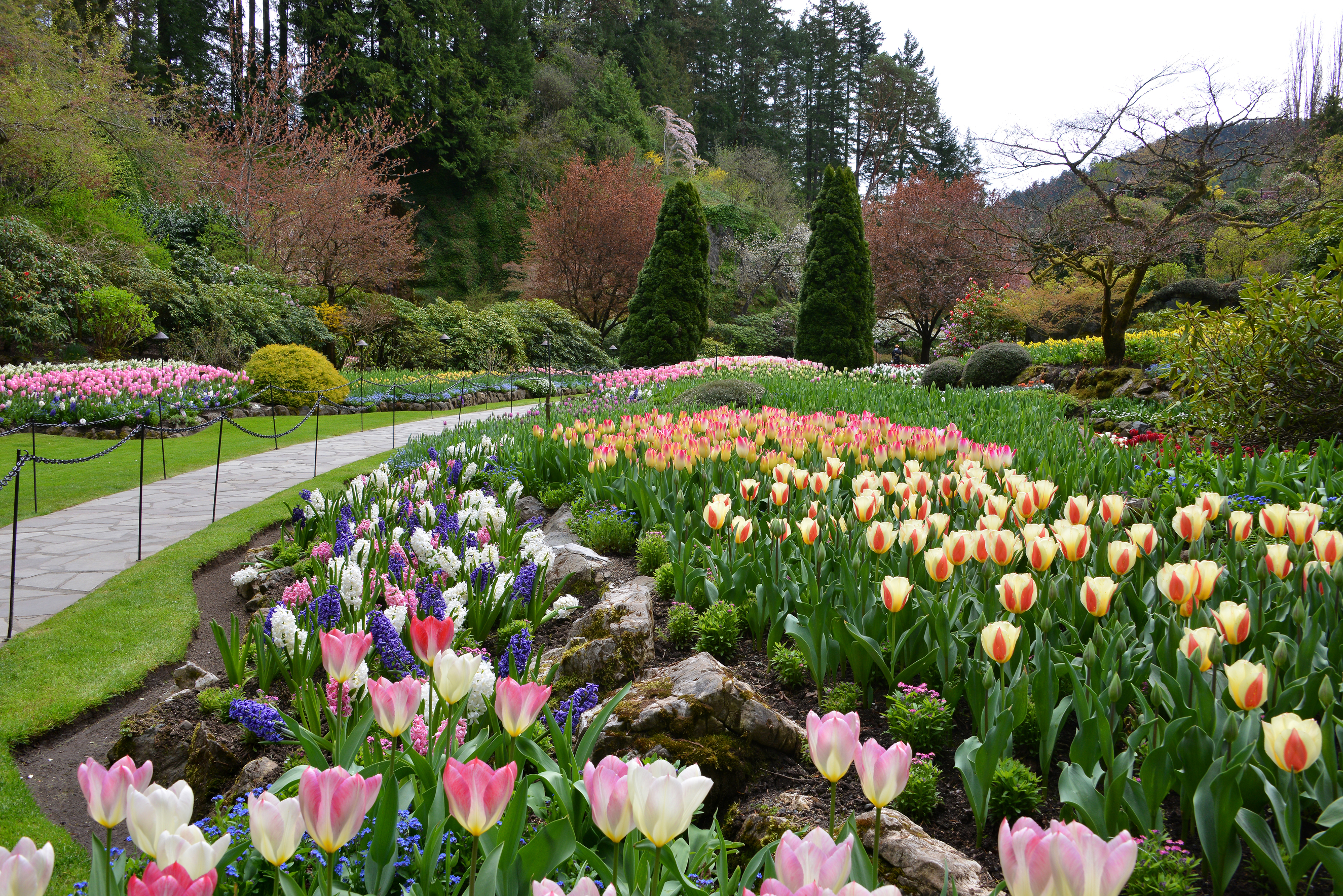 The Butchart Gardens Victoria