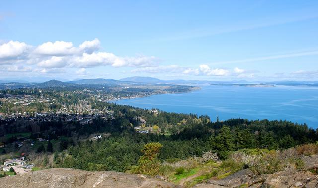 Mount Douglas Park view