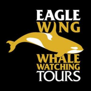 Eagle Wing Tours has been rated #1 on Tripadvisor since 2007.